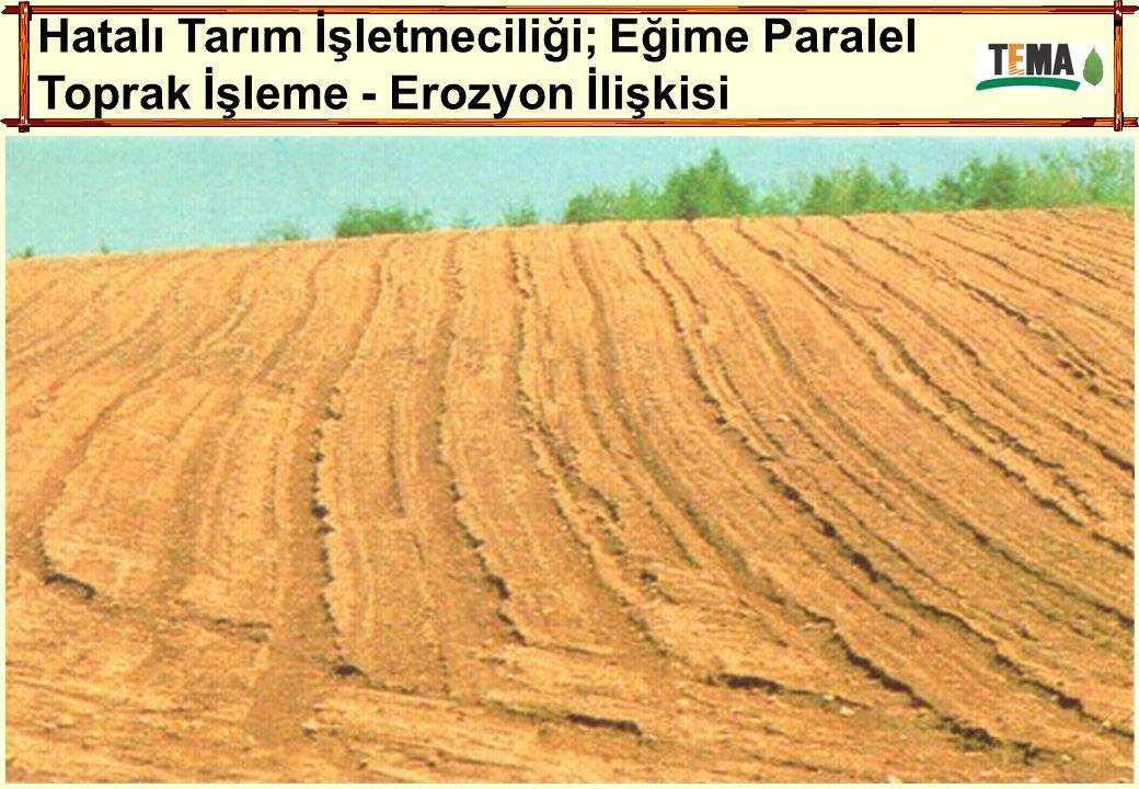 Hatalı Tarım İşletmeciliği; Eğime Paralel Toprak İşleme - Erozyon İlişkisi