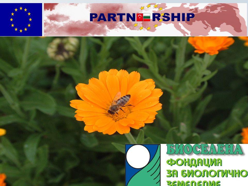 BİOSELENA ORGANİK TARIM VAKFI   Bulgar piyasasını organik ü rnler i ç in geliştirme, tanıtım ve lobi yapması.