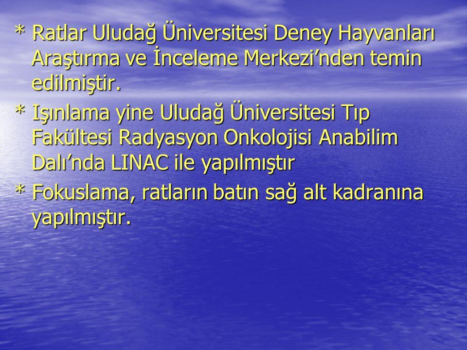* Ratlar Uludağ Üniversitesi Deney Hayvanları Araştırma ve İnceleme Merkezi'nden temin edilmiştir. * Işınlama yine Uludağ Üniversitesi Tıp Fakültesi R