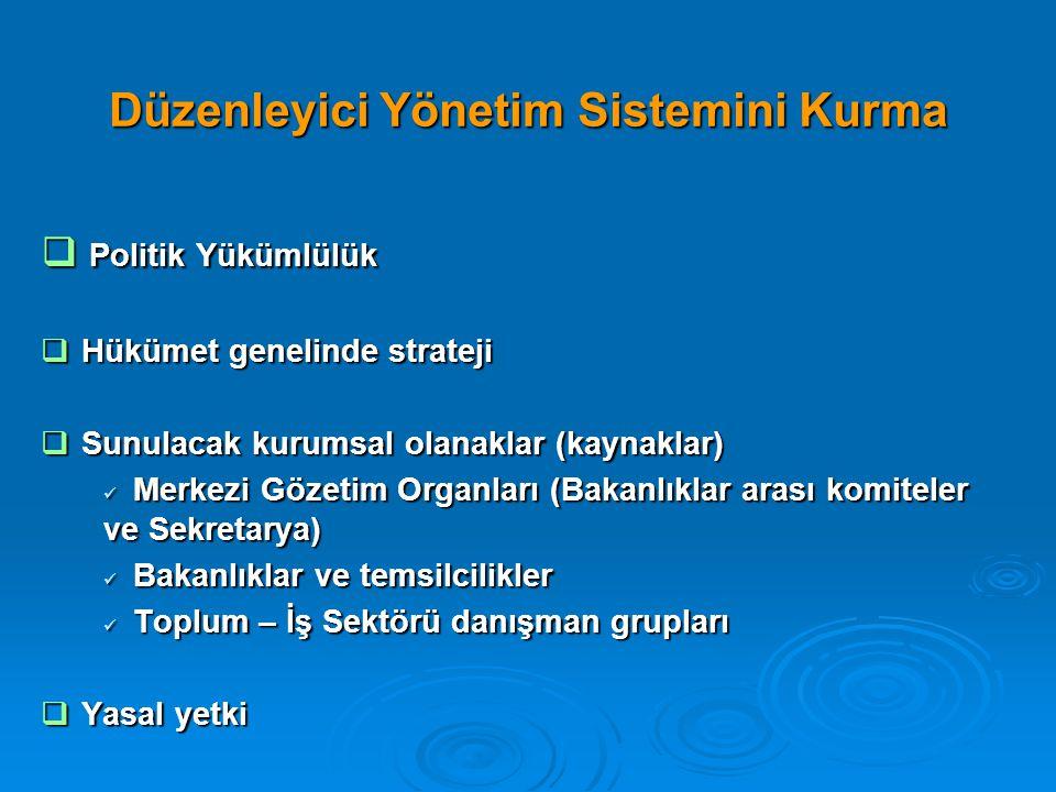 Düzenleyici Yönetim Sistemini Kurma  Politik Yükümlülük  Hükümet genelinde strateji  Sunulacak kurumsal olanaklar (kaynaklar)  Merkezi Gözetim Org
