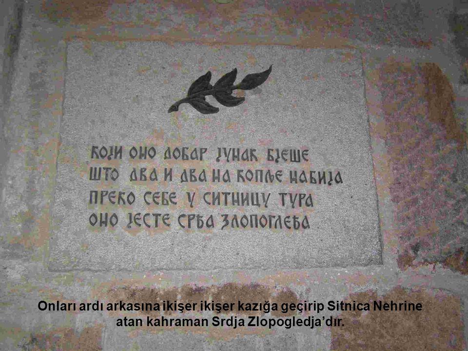 Onları ardı arkasına ikişer ikişer kazığa geçirip Sitnica Nehrine atan kahraman Srdja Zlopogledja'dır.