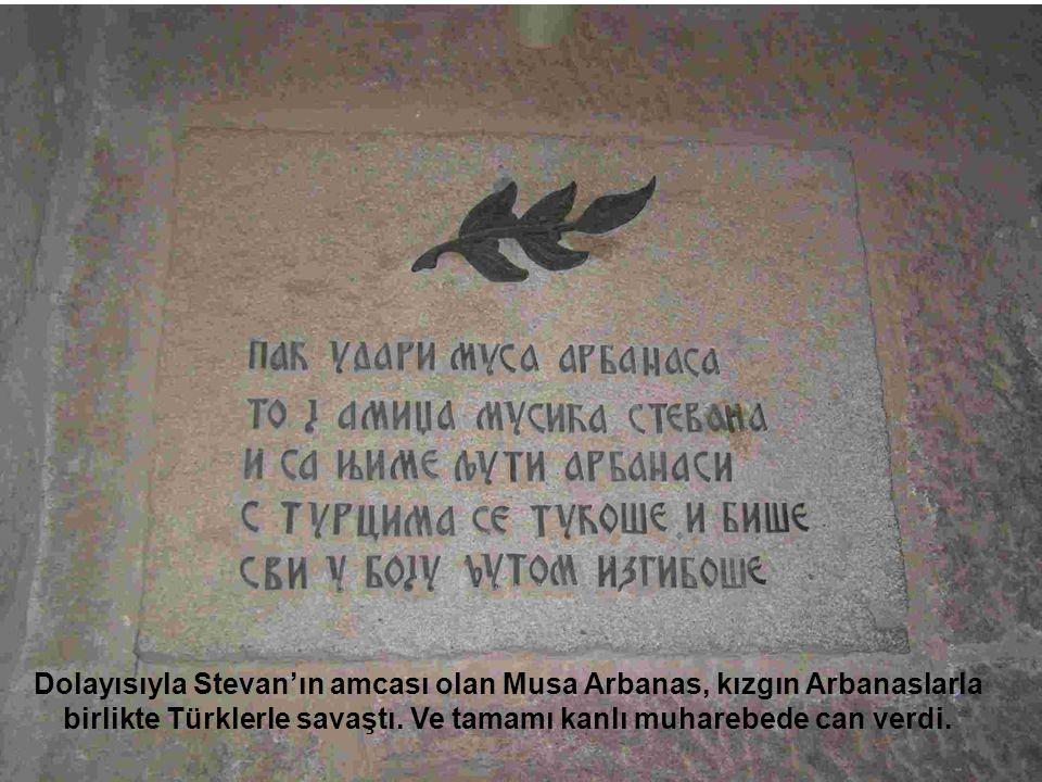 Dolayısıyla Stevan'ın amcası olan Musa Arbanas, kızgın Arbanaslarla birlikte Türklerle savaştı. Ve tamamı kanlı muharebede can verdi.