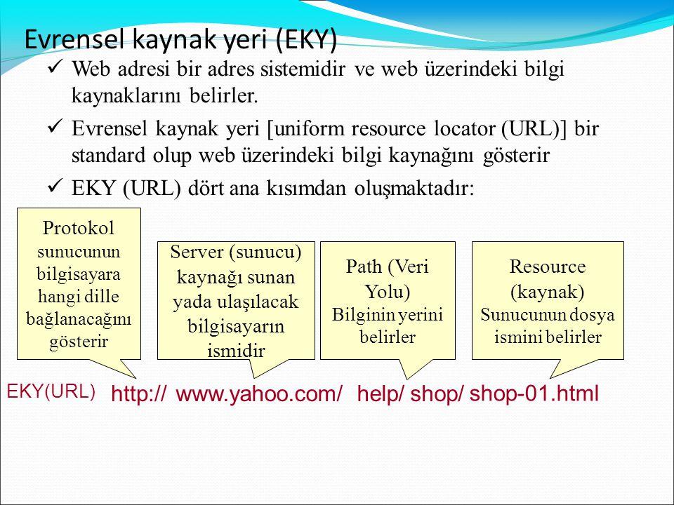  Web adresi bir adres sistemidir ve web üzerindeki bilgi kaynaklarını belirler.  Evrensel kaynak yeri [uniform resource locator (URL)] bir standard