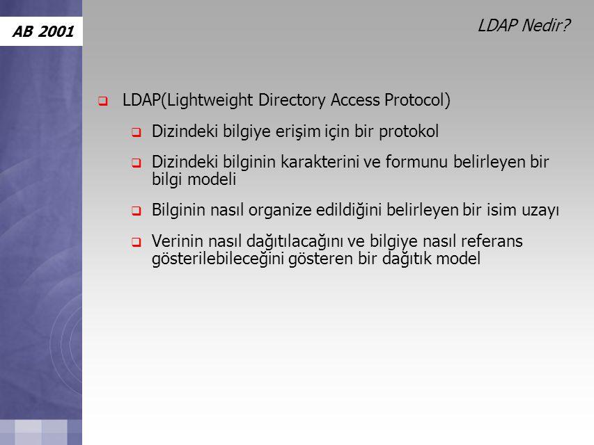 AB 2001 LDAP Nedir.