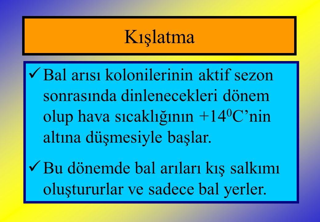 Kışlatma İşlemleri  Salkım merkezinde sıcaklık 33 0 C iken salkım yüzeyindeki sıcaklık 6-8 0 C civarındadır.