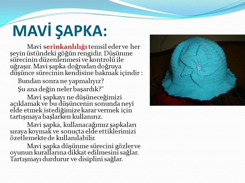MAVİ ŞAPKA: Mavi serinkanlılığı temsil eder ve her şeyin üstündeki göğün rengidir.