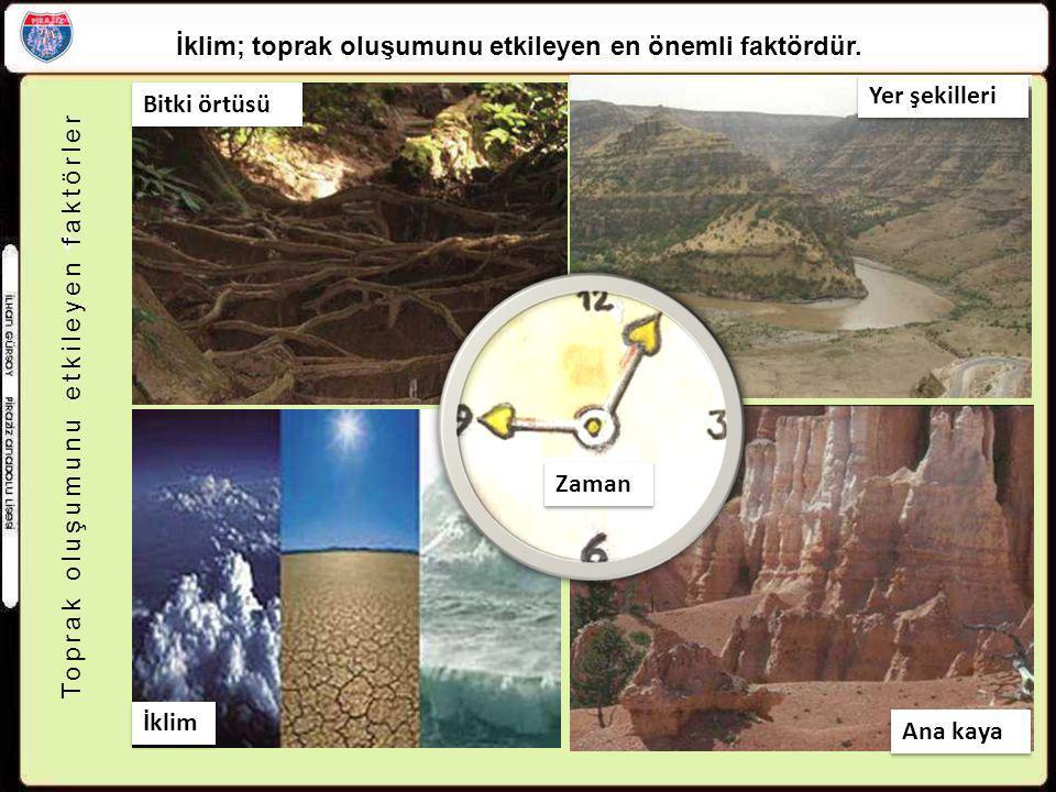 Toprak oluşumunu etkileyen faktörler Bitki örtüsü Yer şekilleri Zaman Ana kaya İklim İklim; toprak oluşumunu etkileyen en önemli faktördür.