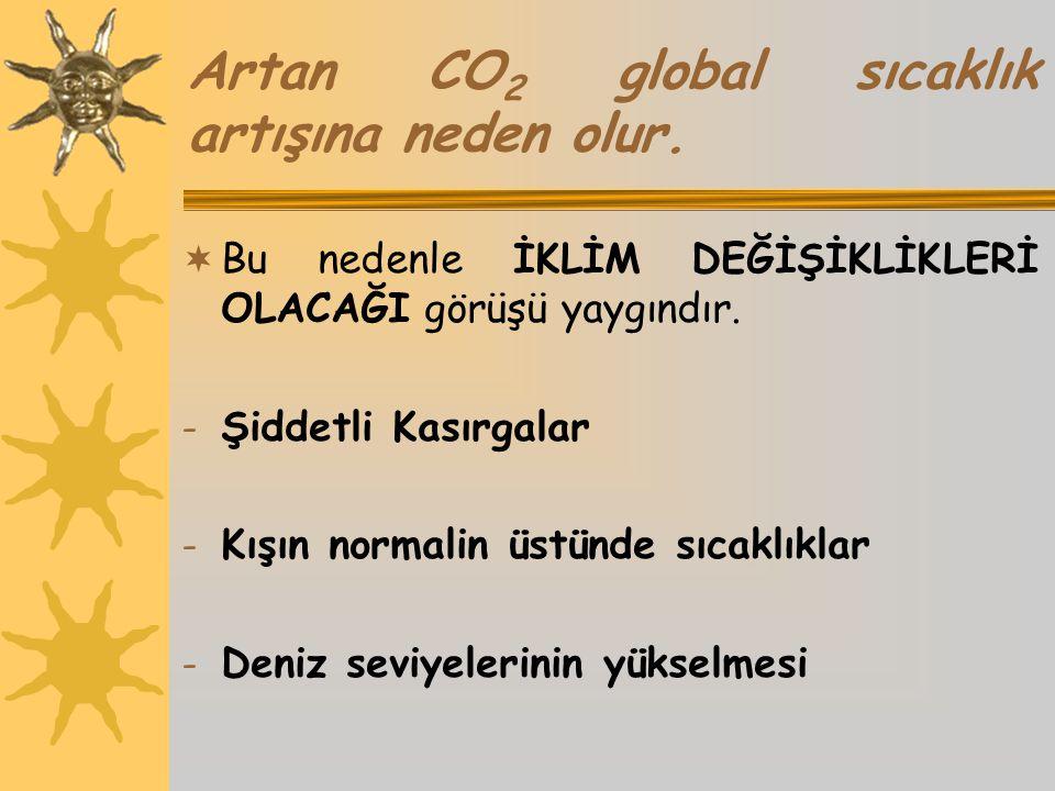 Artan CO 2 global sıcaklık artışına neden olur.  Bu nedenle İKLİM DEĞİŞİKLİKLERİ OLACAĞI görüşü yaygındır. - Şiddetli Kasırgalar - Kışın normalin üst