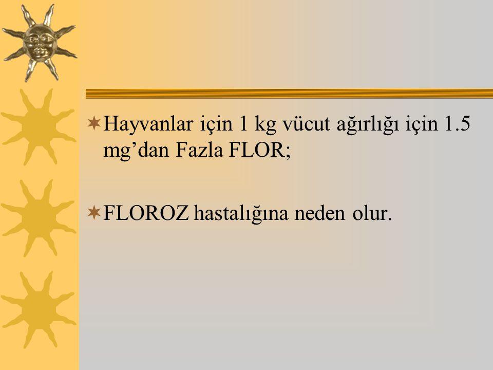  Hayvanlar için 1 kg vücut ağırlığı için 1.5 mg'dan Fazla FLOR;  FLOROZ hastalığına neden olur.