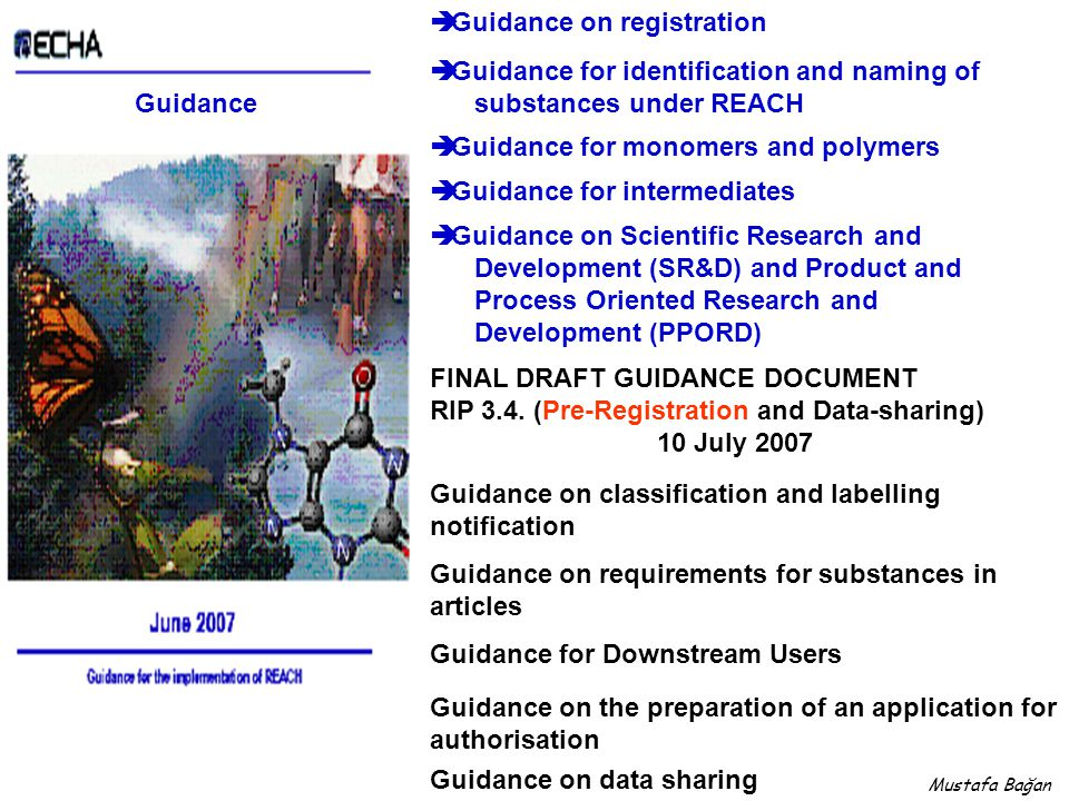 Guidance  Guidance on registration  Guidance for identification and naming of substances under REACH  Guidance for monomers and polymers  Guidance for intermediates  Guidance on Scientific Research and Development (SR&D) and Product and Process Oriented Research and Development (PPORD) FINAL DRAFT GUIDANCE DOCUMENT RIP 3.4.