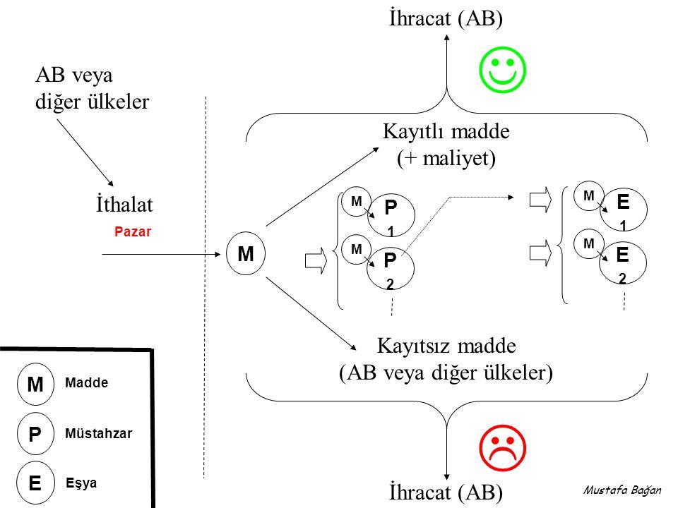 TeACH Technical Assistance in the field of Chemicals (Kimyasallar Alanında Teknik Destek) Mustafa Bağan