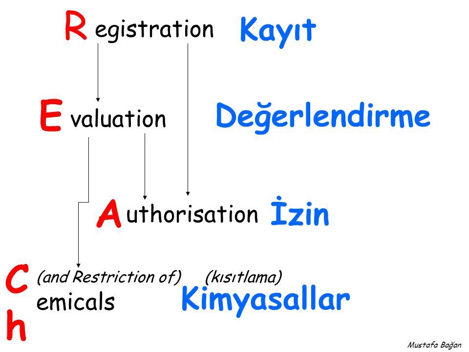 67/548/EEC Tehlikeli maddeleri sınıflandırma, ambalajlama ve etiketleme 99/45/EC (88/379/EEC) Tehlikeli müstahzarları sınıflandırma, ambalajlama ve etiketleme Tehlikeli Maddelerin ve Müstahzarların Sınıflandırılması, Etiketlenmesi ve Ambalajlanması Hakkında Taslak Yönetmelik REACH DIRECTIVE 2006/121/EC Mustafa Bağan