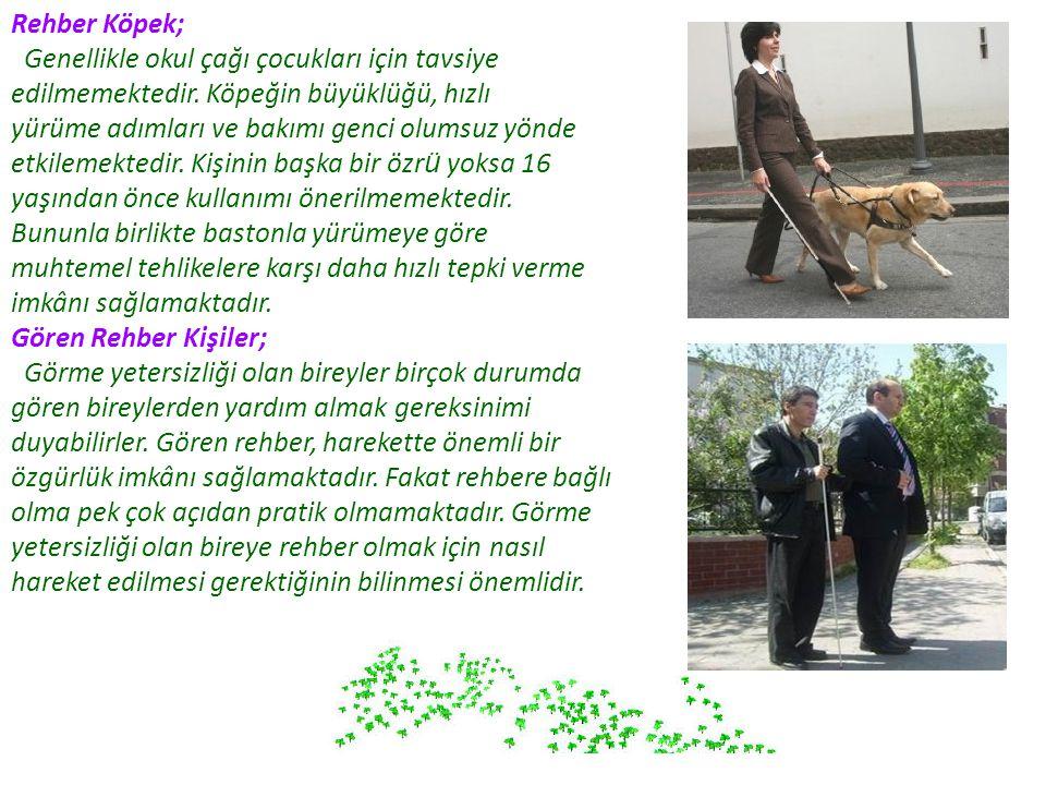 Rehber Köpek; Genellikle okul çağı çocukları için tavsiye edilmemektedir. Köpeğin büyüklüğü, hızlı yürüme adımları ve bakımı genci olumsuz yönde etkil
