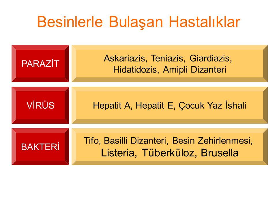 Besinlerle Bulaşan Hastalıklar PARAZİT Askariazis, Teniazis, Giardiazis, Hidatidozis, Amipli Dizanteri VİRÜSHepatit A, Hepatit E, Çocuk Yaz İshali BAK