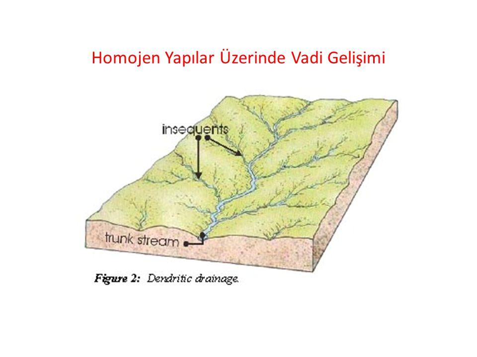 Homojen Yapılar Üzerinde Vadi Gelişimi