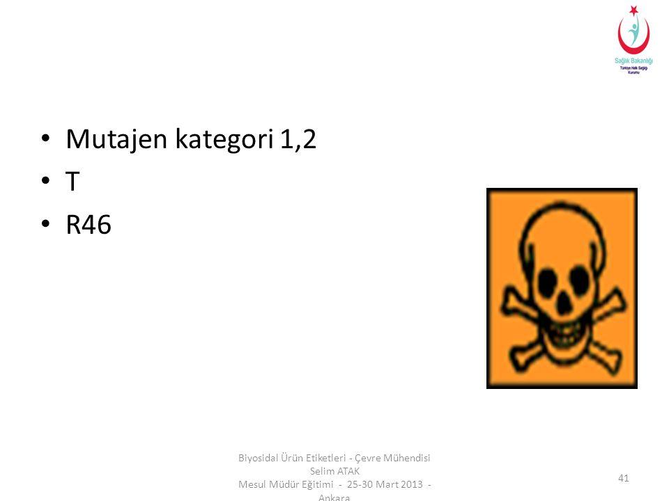 • Mutajen kategori 1,2 • T • R46 Biyosidal Ürün Etiketleri - Çevre Mühendisi Selim ATAK Mesul Müdür Eğitimi - 25-30 Mart 2013 - Ankara 41