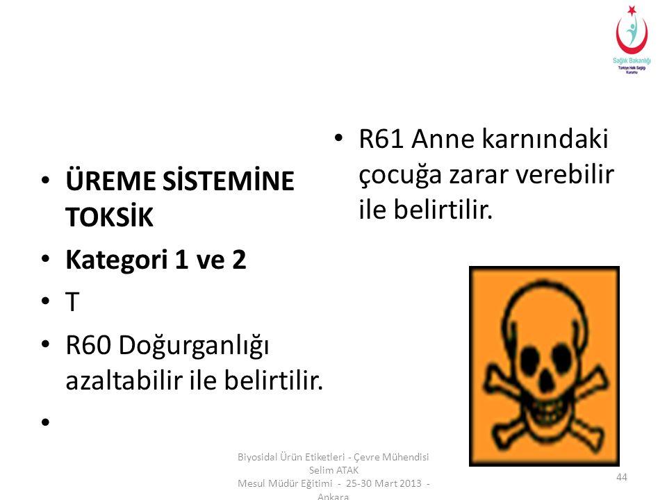 • ÜREME SİSTEMİNE TOKSİK • Kategori 1 ve 2 • T • R60 Doğurganlığı azaltabilir ile belirtilir. • • R61 Anne karnındaki çocuğa zarar verebilir ile belir