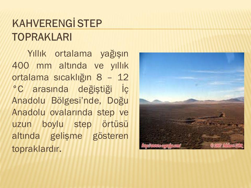 KAHVERENGİ STEP TOPRAKLARI Yıllık ortalama yağışın 400 mm altında ve yıllık ortalama sıcaklığın 8 – 12 °C arasında değiştiği İç Anadolu Bölgesi'nde, D