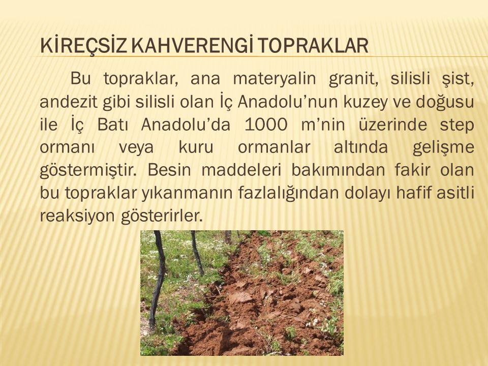 KİREÇSİZ KAHVERENGİ TOPRAKLAR Bu topraklar, ana materyalin granit, silisli şist, andezit gibi silisli olan İç Anadolu'nun kuzey ve doğusu ile İç Batı