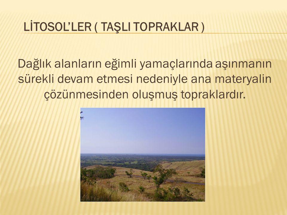 LİTOSOL'LER ( TAŞLI TOPRAKLAR ) Dağlık alanların eğimli yamaçlarında aşınmanın sürekli devam etmesi nedeniyle ana materyalin çözünmesinden oluşmuş top