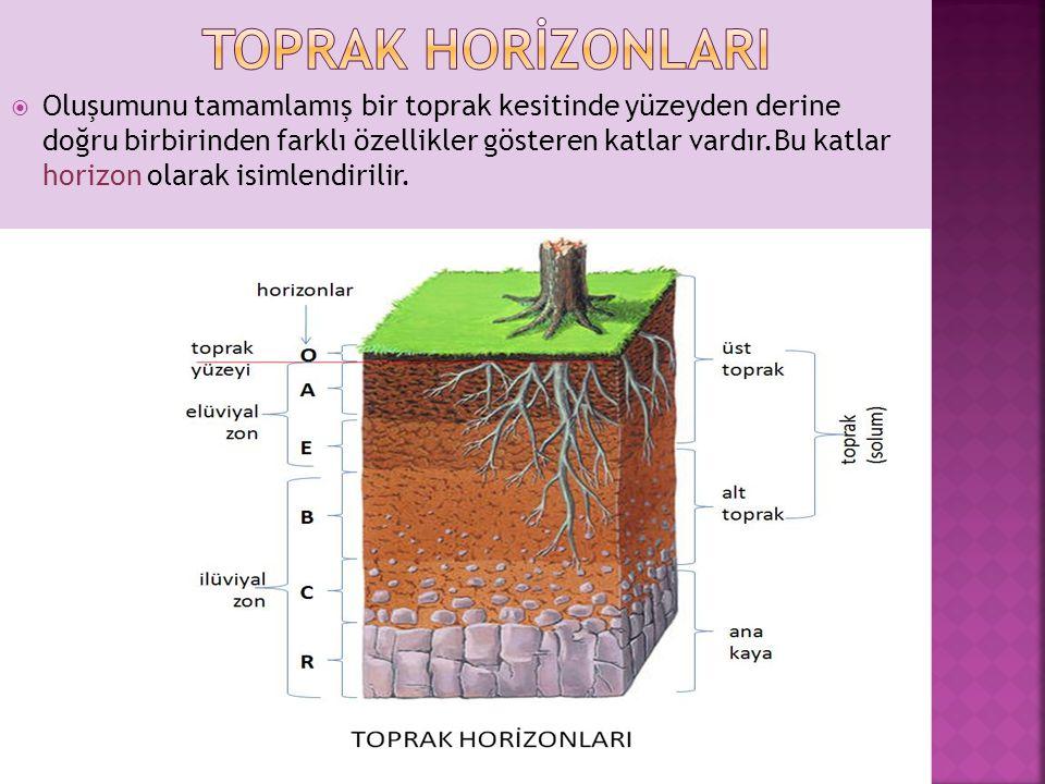  Oluşumunu tamamlamış bir toprak kesitinde yüzeyden derine doğru birbirinden farklı özellikler gösteren katlar vardır.Bu katlar horizon olarak isimlendirilir.