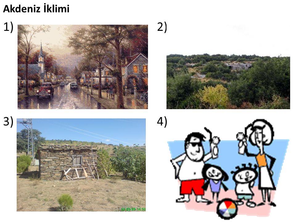 Akdeniz İklimi 1) 2) 3) 4)