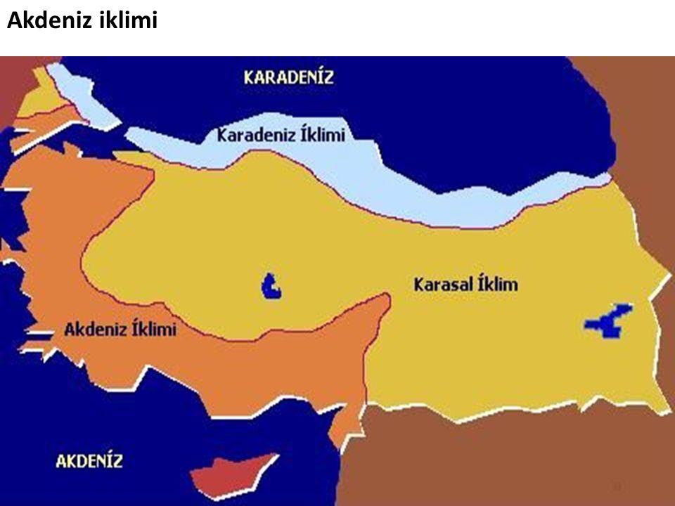 Akdeniz iklimi