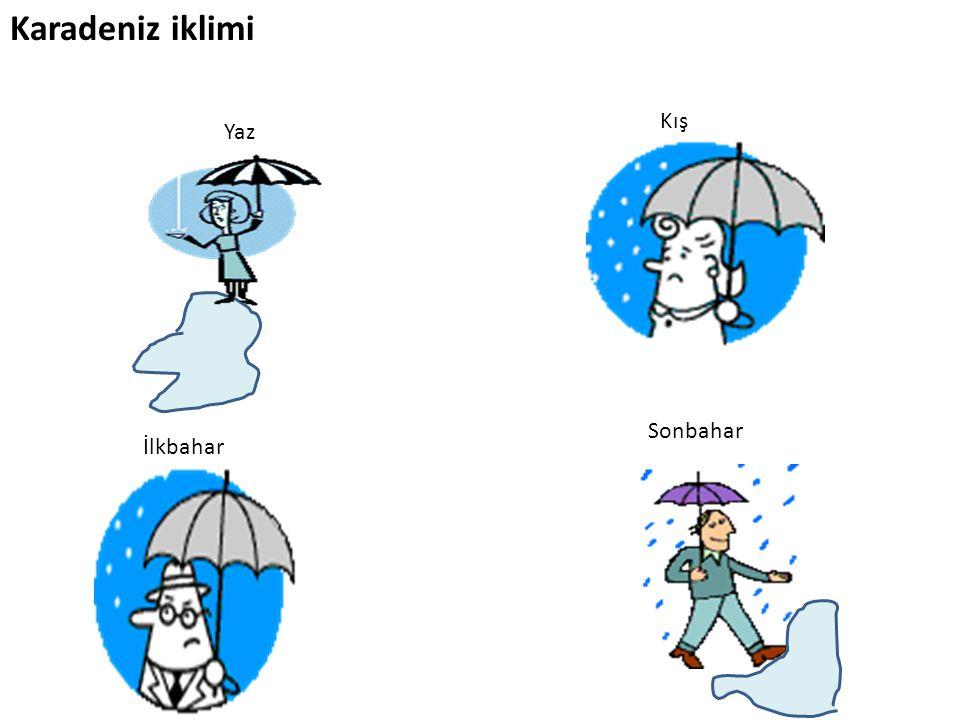 Karadeniz iklimi Yaz İlkbahar Kış Sonbahar