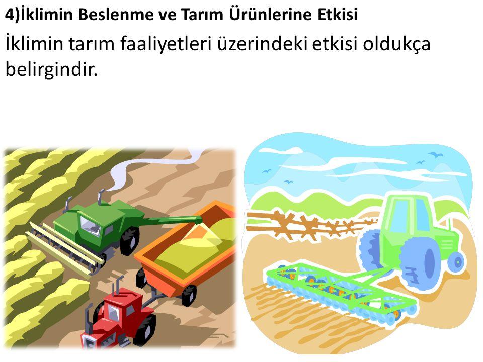 4)İklimin Beslenme ve Tarım Ürünlerine Etkisi İklimin tarım faaliyetleri üzerindeki etkisi oldukça belirgindir.
