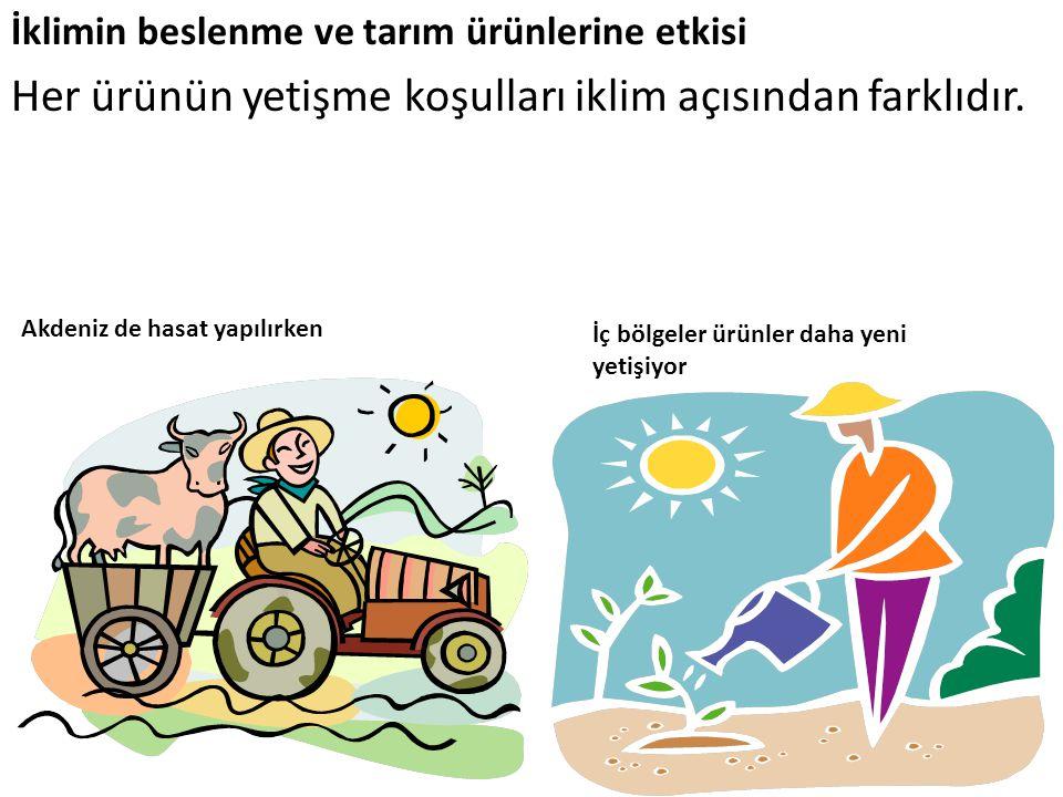 İklimin beslenme ve tarım ürünlerine etkisi Her ürünün yetişme koşulları iklim açısından farklıdır. Akdeniz de hasat yapılırken İç bölgeler ürünler da