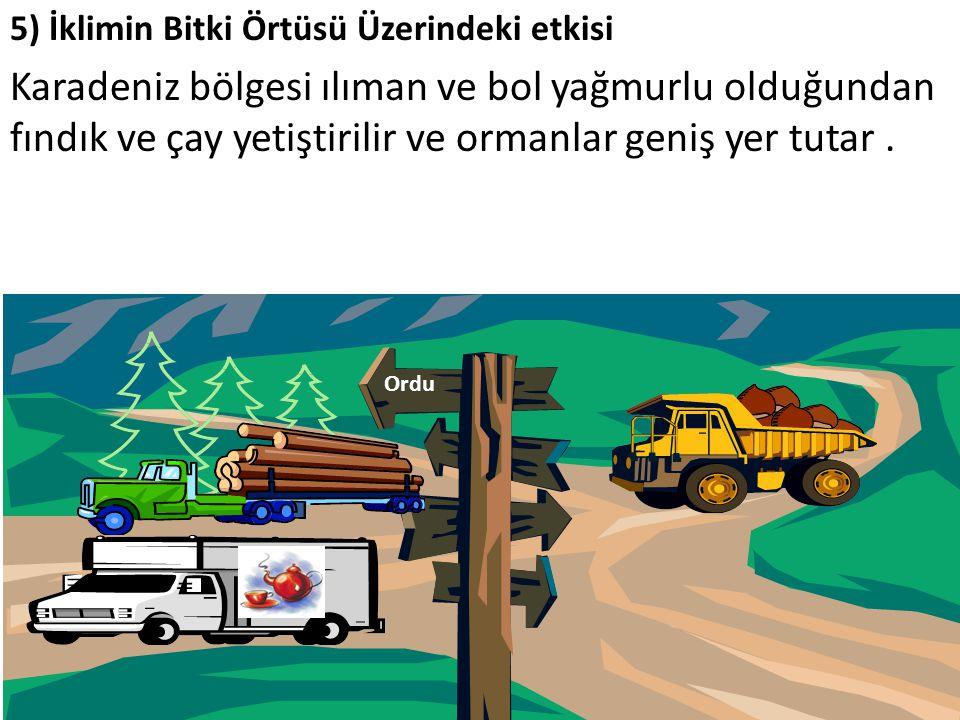 5) İklimin Bitki Örtüsü Üzerindeki etkisi Karadeniz bölgesi ılıman ve bol yağmurlu olduğundan fındık ve çay yetiştirilir ve ormanlar geniş yer tutar.