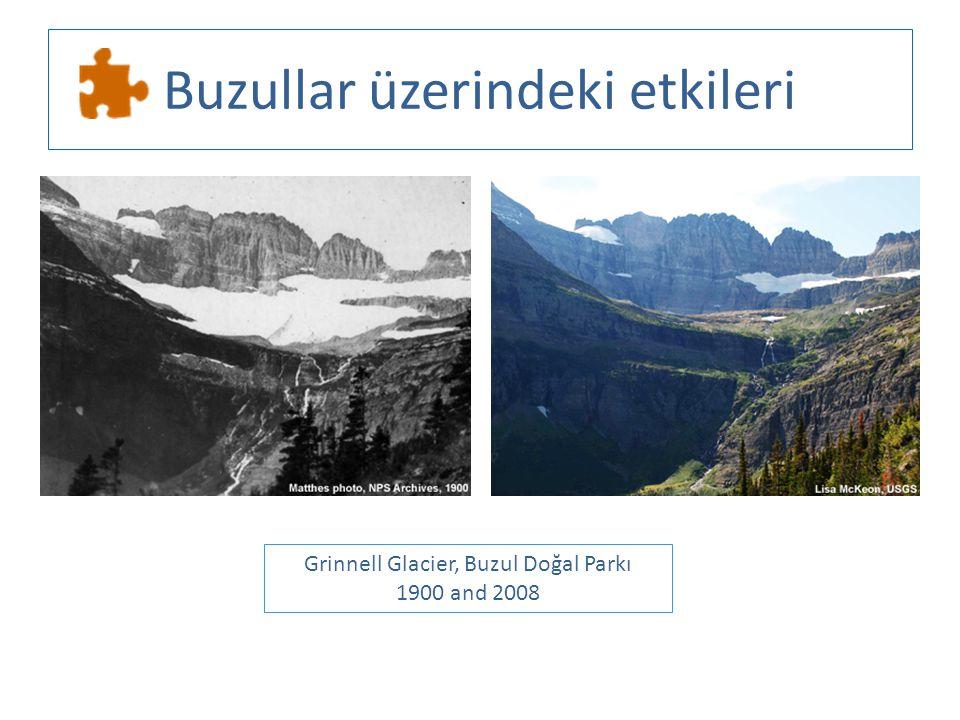 Buzullar üzerindeki etkileri Grinnell Glacier, Buzul Doğal Parkı 1900 and 2008