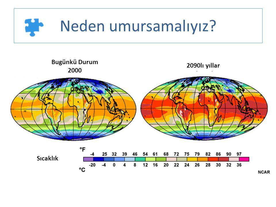 Neden umursamalıyız? Bugünkü Durum 2000 2090lı yıllar Sıcaklık