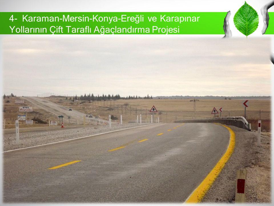 4- Karaman-Mersin-Konya-Ereğli ve Karapınar Yollarının Çift Taraflı Ağaçlandırma Projesi