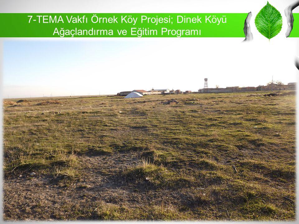 7-TEMA Vakfı Örnek Köy Projesi; Dinek Köyü Ağaçlandırma ve Eğitim Programı