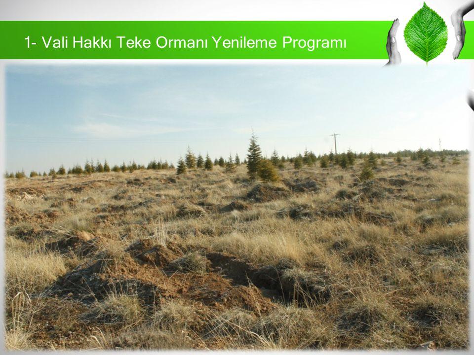 Tanım :Vali Hakkı Teke Ormanı Yenileme Programı Mülkiyet Durumu :İl Özel İdaresi Fidan Dikimi Ön Hazırlığı :Orman İşletme Müdürlüğü Fidan Tedariki :Orman İşletme Müdürlüğü Proje Paydaşları:Karaman Valiliği, Orman İşletme Müdürlüğü TEMA Vakfı Karaman Temsilciliği Projenin UygulanmasıProje paydaşları tarafından halka duyuru yapılarak katılımları sağlanacak.