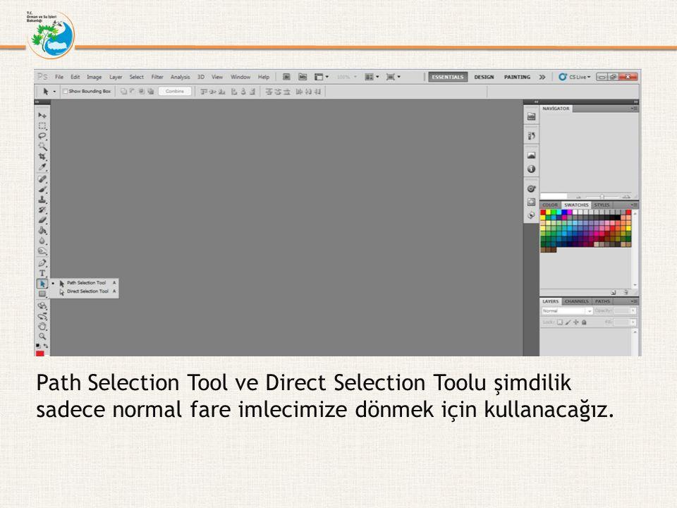 Path Selection Tool ve Direct Selection Toolu şimdilik sadece normal fare imlecimize dönmek için kullanacağız.