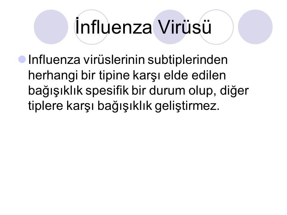 İnfluenza Virüsü  Influenza virüslerinin subtiplerinden herhangi bir tipine karşı elde edilen bağışıklık spesifik bir durum olup, diğer tiplere karşı bağışıklık geliştirmez.