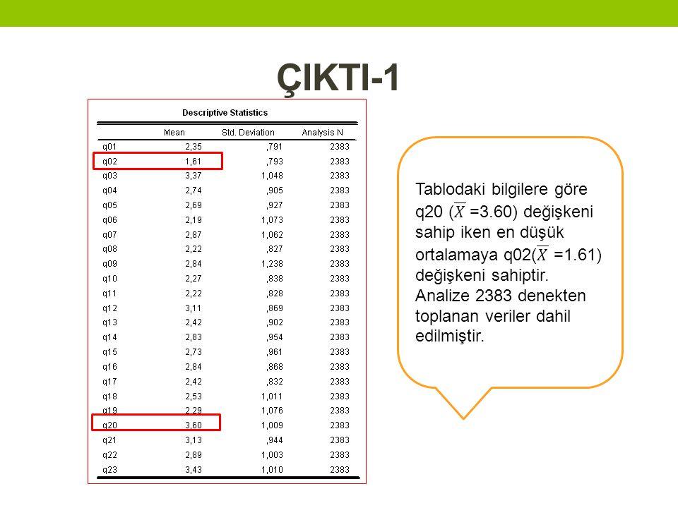 ÇIKTI-1