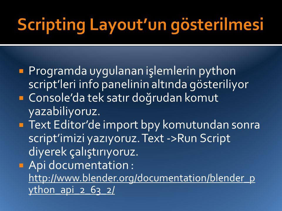  Programda uygulanan işlemlerin python script'leri info panelinin altında gösteriliyor  Console'da tek satır doğrudan komut yazabiliyoruz.  Text Ed