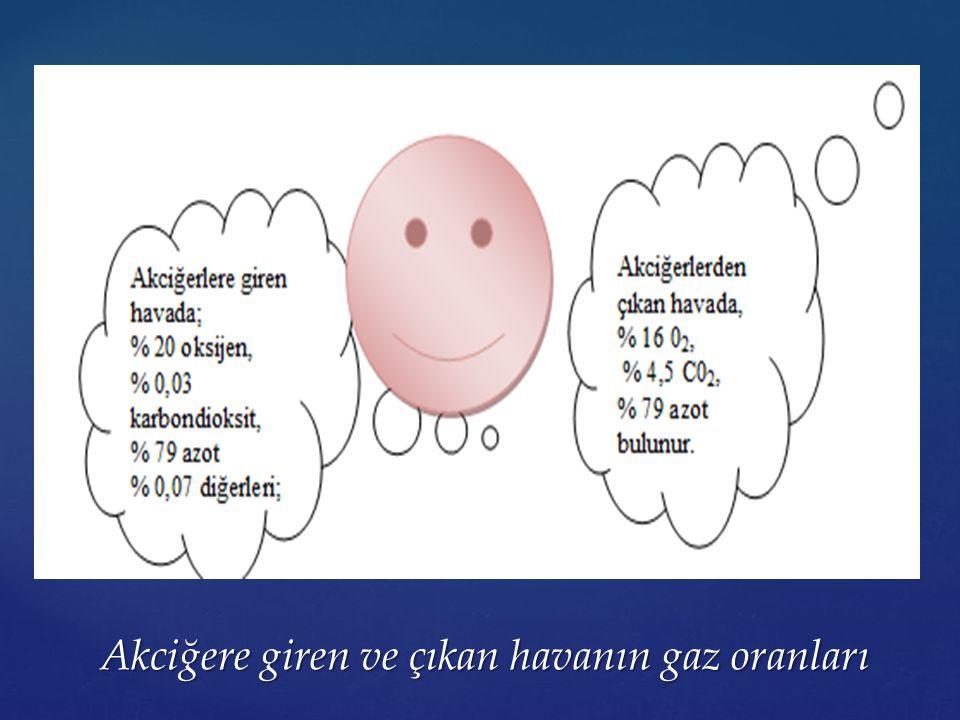 Akciğere giren ve çıkan havanın gaz oranları Akciğere giren ve çıkan havanın gaz oranları