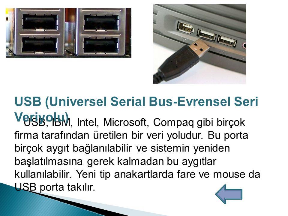 1) COM(Communications) Portu: Fare ve harici modem bağlantıları için kullanılır.