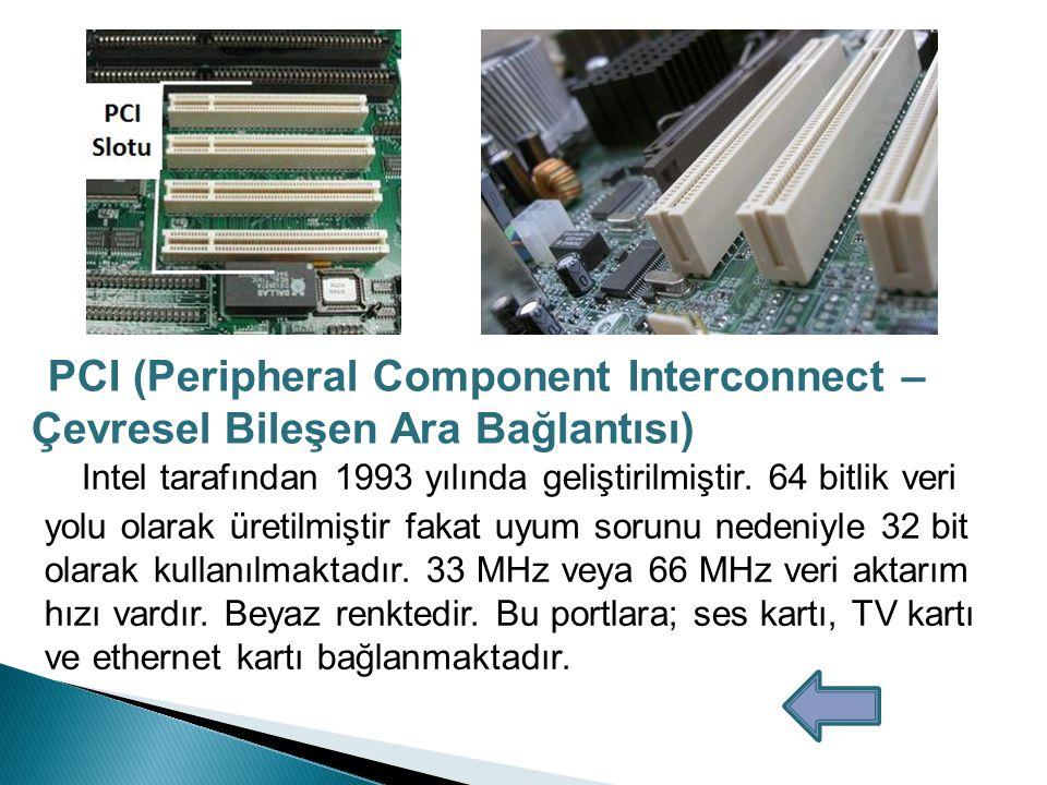 Ses Girişi: Açık mavi renkte olan bu porta teyp, CD, DVD çalar ya da diğer ses kaynakları bağlanabilir.
