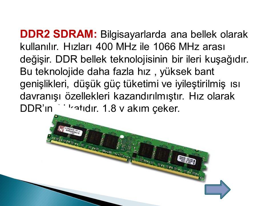  Standart RAM Bellek: Günümüzde artık kullanımdan kalkmıştır.