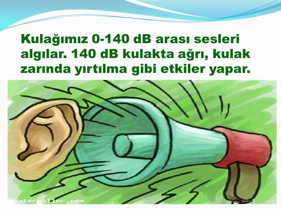 Kulağımız 0-140 dB arası sesleri algılar. 140 dB kulakta ağrı, kulak zarında yırtılma gibi etkiler yapar.