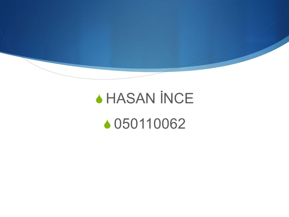  HASAN İNCE  050110062