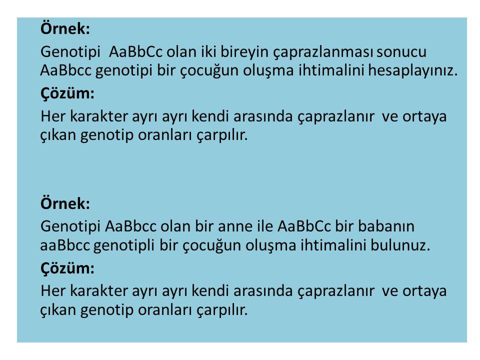 Örnek: Genotipi AaBbCc olan iki bireyin çaprazlanması sonucu AaBbcc genotipi bir çocuğun oluşma ihtimalini hesaplayınız.