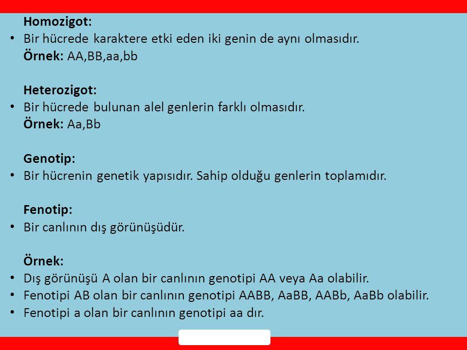 Homozigot: • Bir hücrede karaktere etki eden iki genin de aynı olmasıdır.