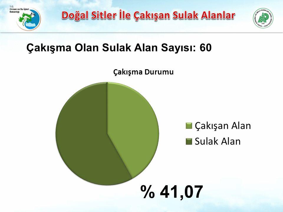 % 41,07 Çakışma Olan Sulak Alan Sayısı: 60