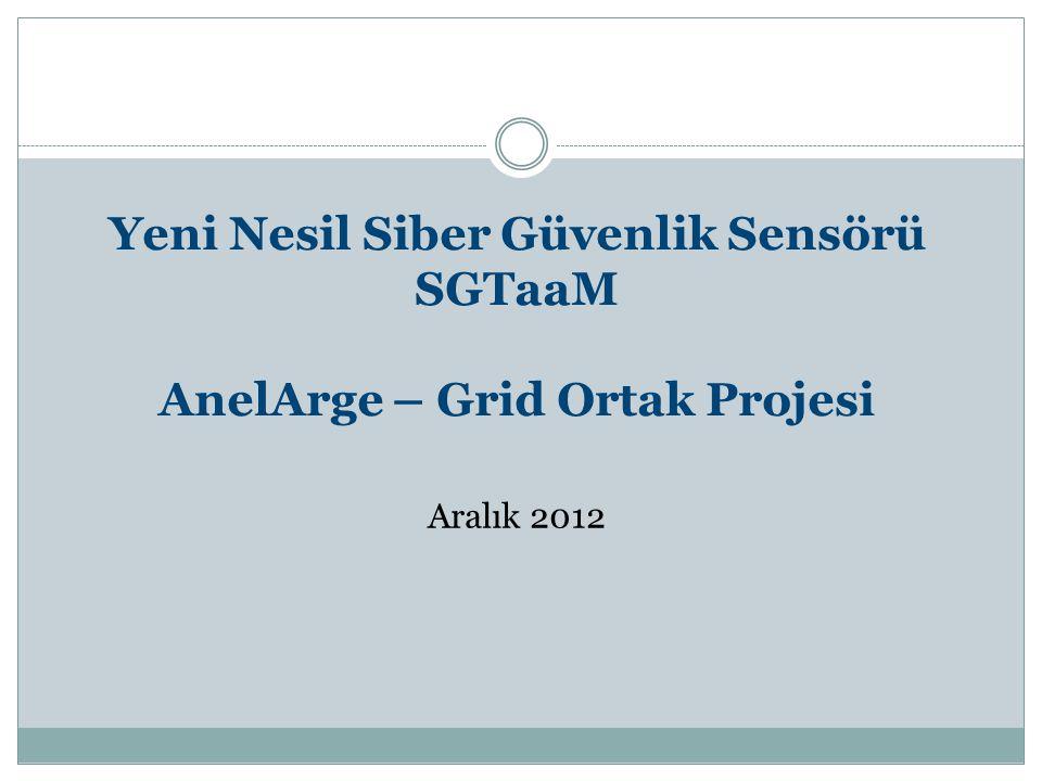Yeni Nesil Siber Güvenlik Sensörü SGTaaM AnelArge – Grid Ortak Projesi Aralık 2012